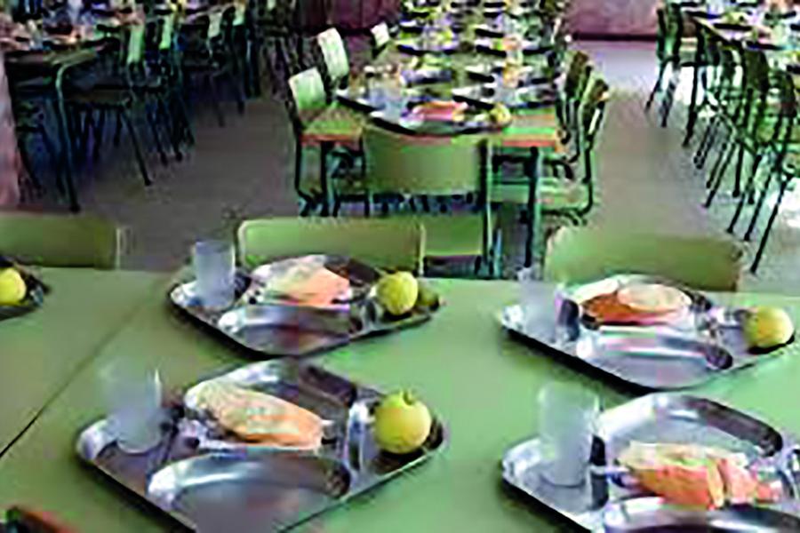 Manifiesto por la por la viabilidad presente y la sostenibilidad futura del servicio de comedor escolar en Andalucía