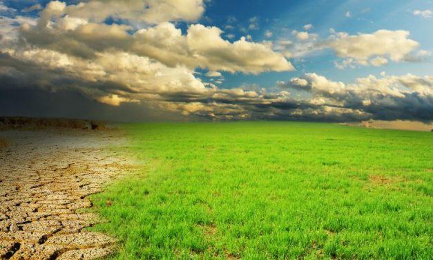 Los planes de recuperación, una oportunidad para impulsar un modelo económico más sostenible y equitativo