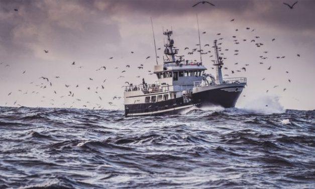 UGT reclama medidas urgentes para proteger nuestros océanos